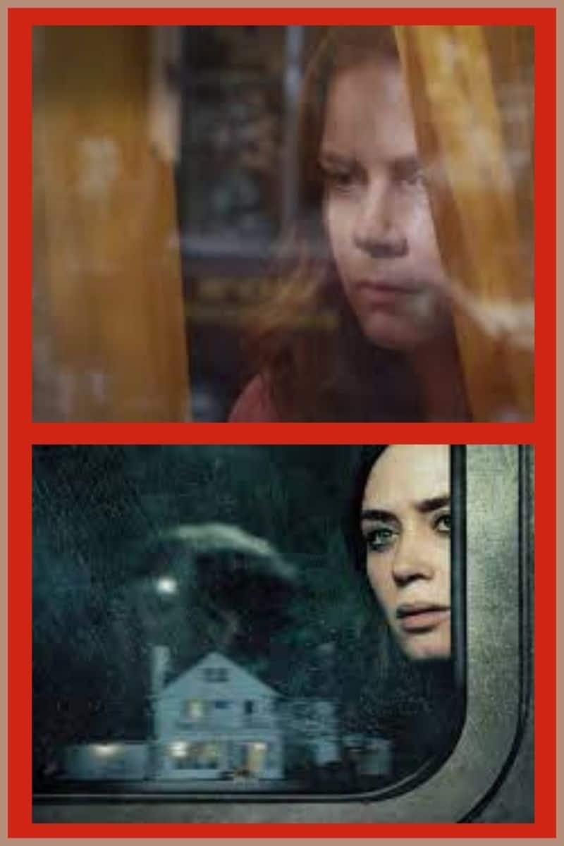 Analisi-thriller-psicologico-la-donna-alla-finestra-soggetto-narrazione-la-ragazza-del-treno-blog-il-Biondino-della-Spider-Rossa